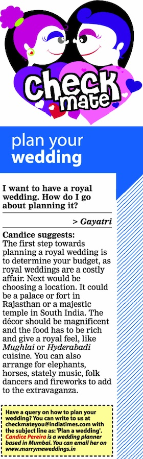 Royal wedding in India